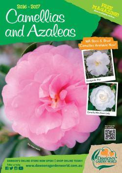 2016 - 17 Camellias and Azaleas Catalogue